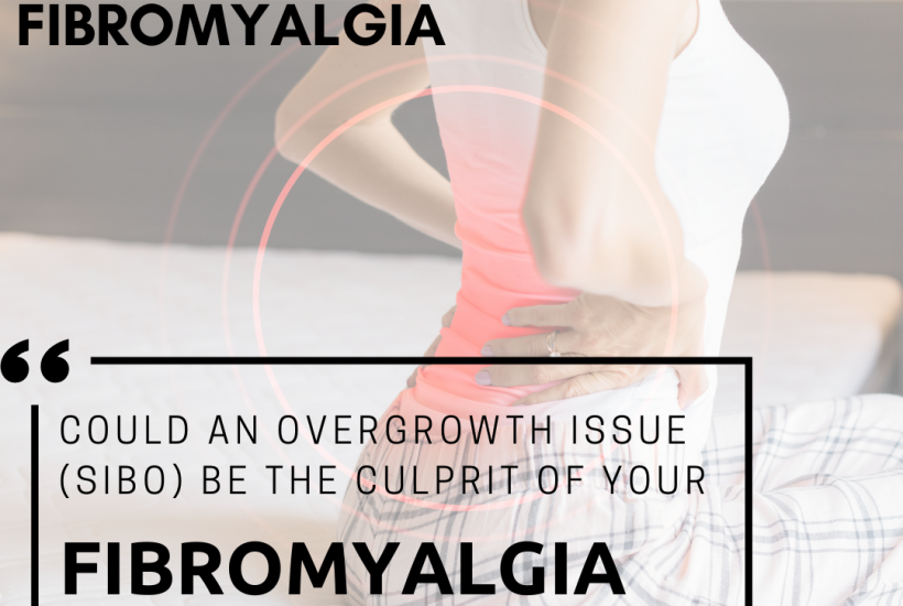 Connecting Gut Dysfunction with Fibromyalgia